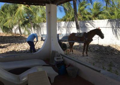 vilakapa-parajuru-bresil-maison-vila-kapa-travaux-evacuation-gravats-a-cheval